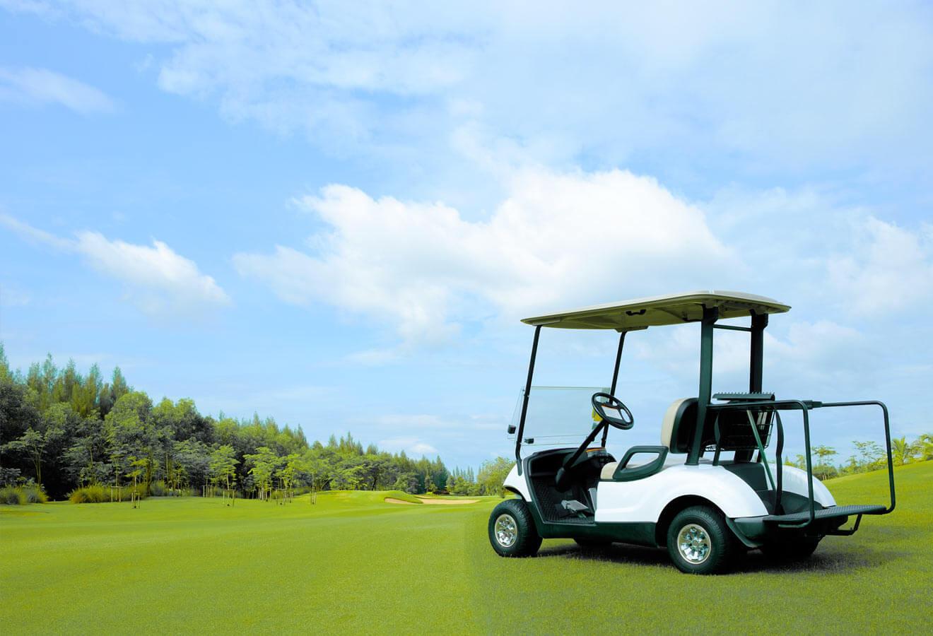 Batterien für Golfcarts